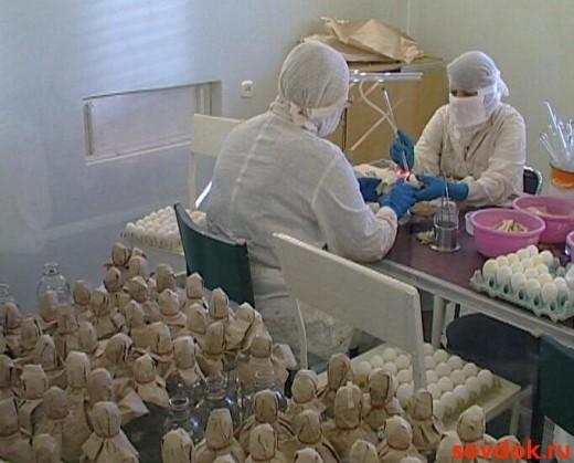 вирусологическая лаборатория