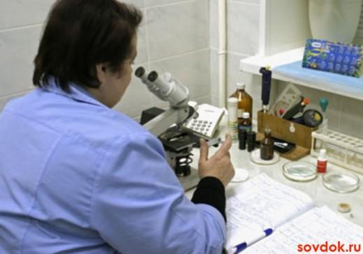 лаборант и микроскоп