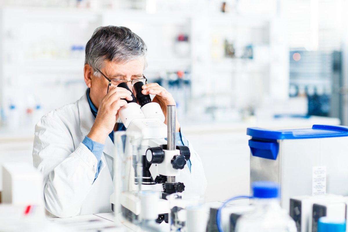 развернутый анализ холестерина в крови у женщин