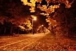 Прогулки перед сном