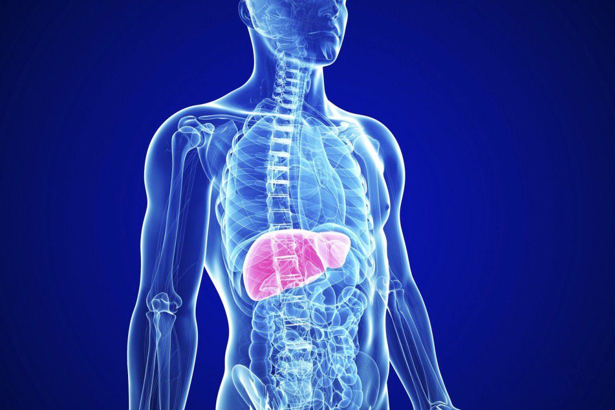 Новое о хроническом вирусном гепатите  В