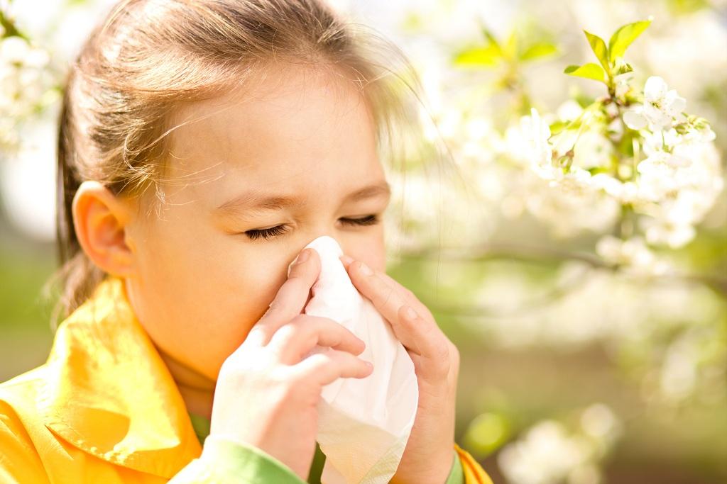 Краткие сведения об  аллергии к насекомым