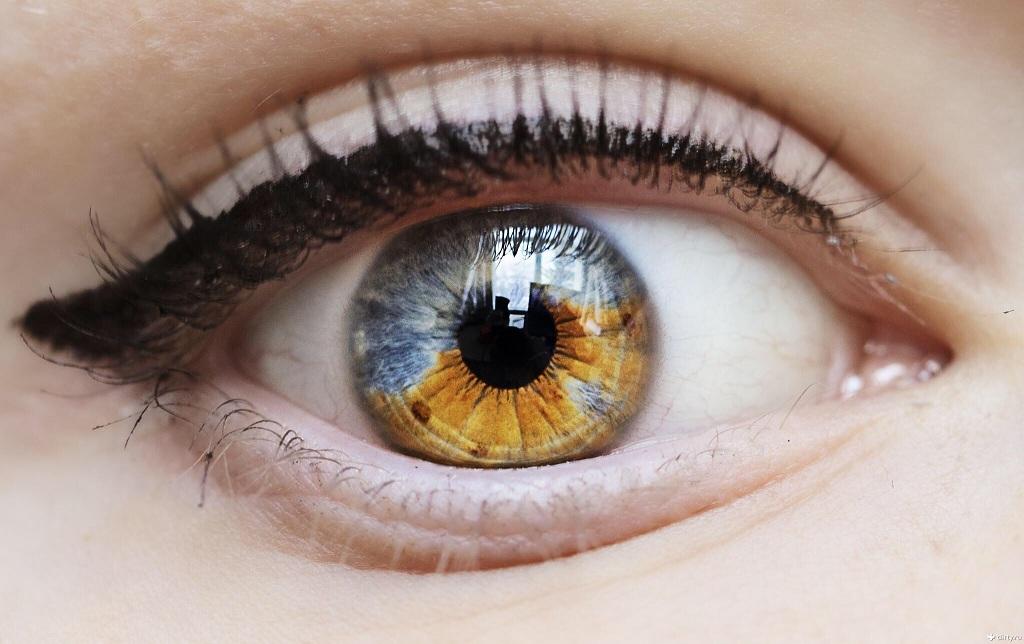 Поражения   глаза  в задних  отделах при   легочном  туберкулёзе,  туберкулёзном  менингоэнцефалите  и  других  формах туберкулёза