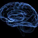 Самое  актуальное  об  отёке  головного  мозга