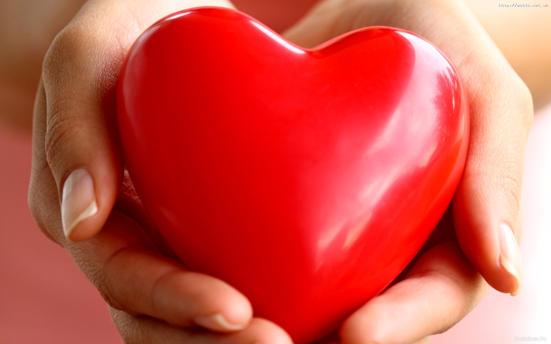 Профилактика инфаркта миокарда — как уберечь себя от проблем с сердцем