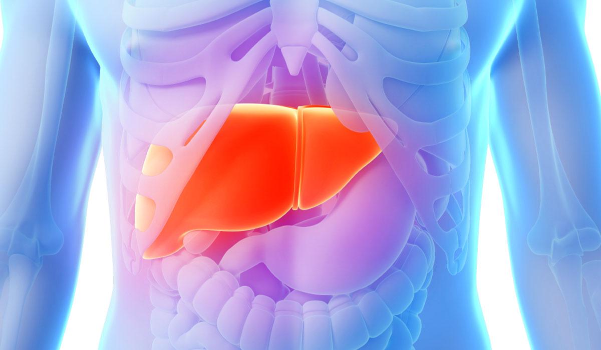 Цирроз  печени  и   мышечные судороги: причины   возникновения   и  адекватное  лечение