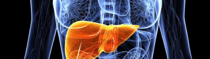 Заболевания печени у пожилых людей: особенности течения