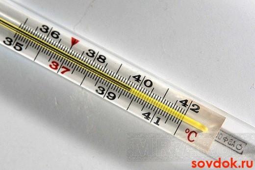 Температура тела при эндокардите повышается до 39-40 градусов