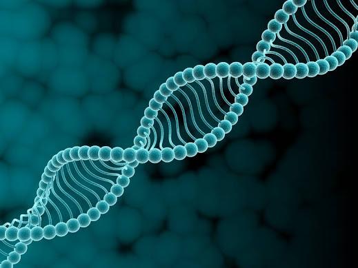 Вирусная теория причины псориаза