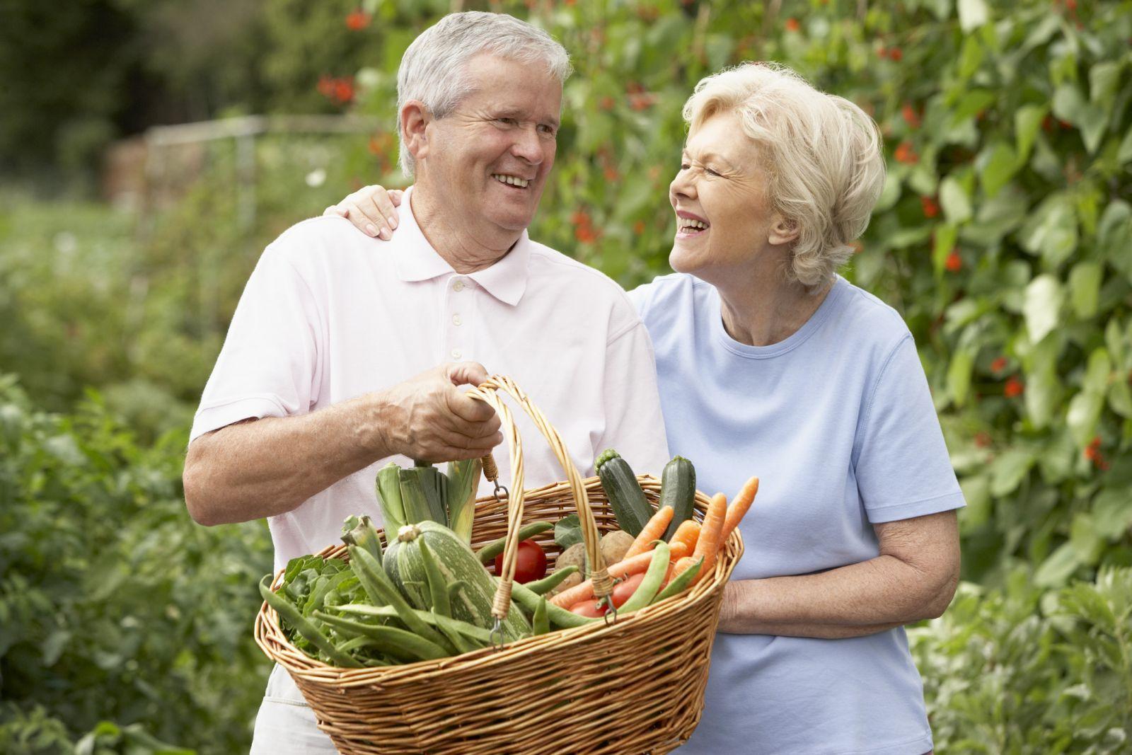 Иммунные аспекты старения организма или как продлить жизнь