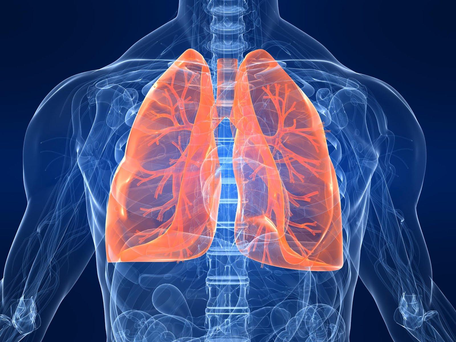 Лечение хронической обструктивной болезни лёгких  препаратом Онбрез Бризхалер