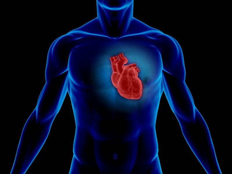 Как влияет алкоголь на сердце, сосуды и давление