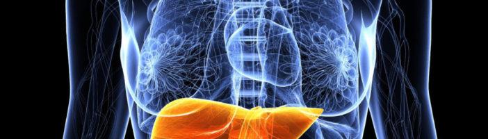 Неалкогольная  жировая  болезнь  печени:  причины  и  последствия