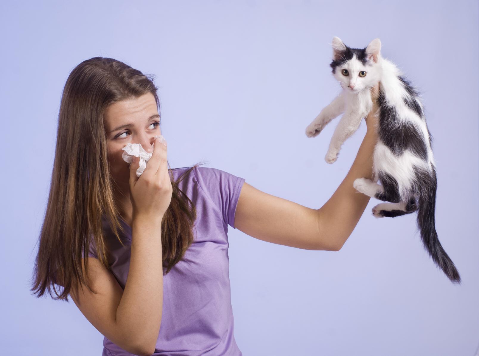 Аллергия и домашние животные