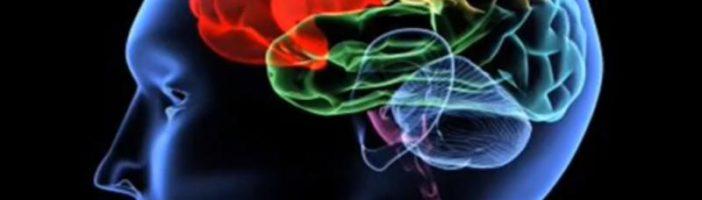 Причины и профилактика инсульта головного мозга