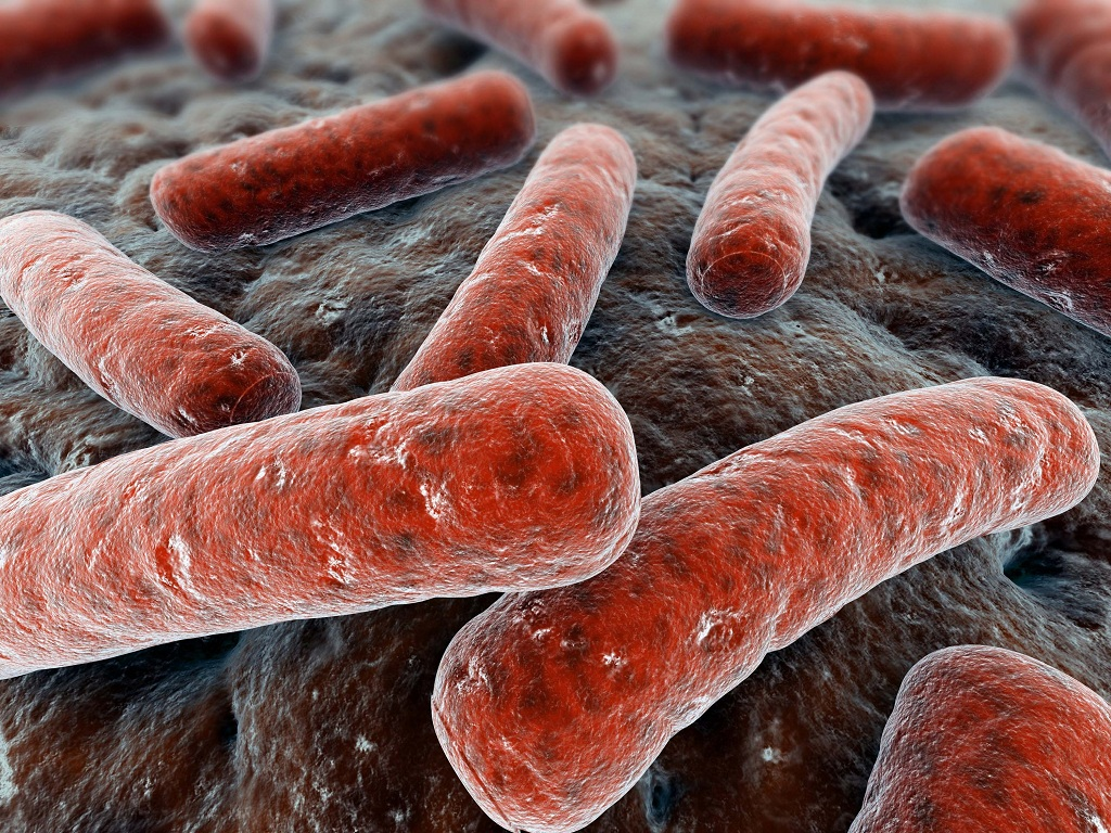 Важность обнаружения и своевременной диагностики туберкулёза лёгких