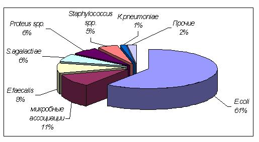 Бактерии-возбудители пиелонефрита (диаграмма)