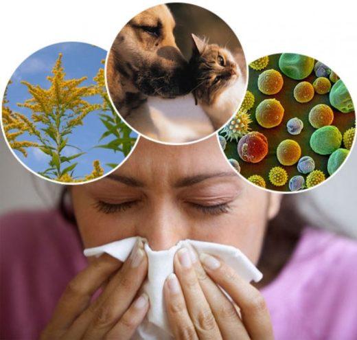 Факторы риска — аллергены