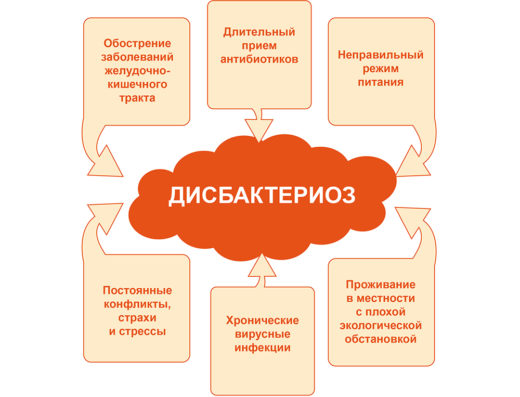 Схема развития дисбактериоза