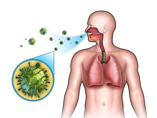 Распространение гриппа