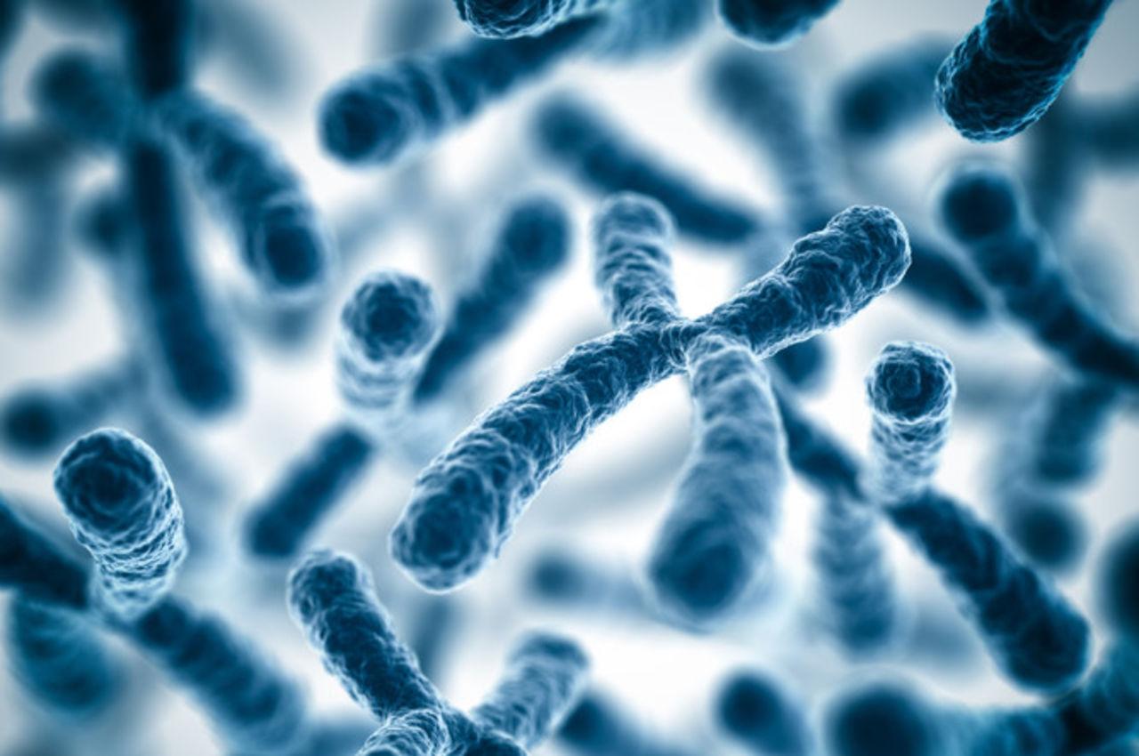 Генетическая причина бесплодия у женщин: синдром Тёрнера-Шерешевского