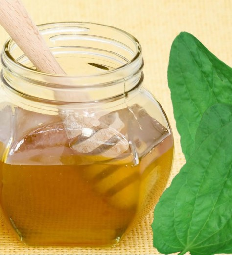 Мёд и сок подорожника