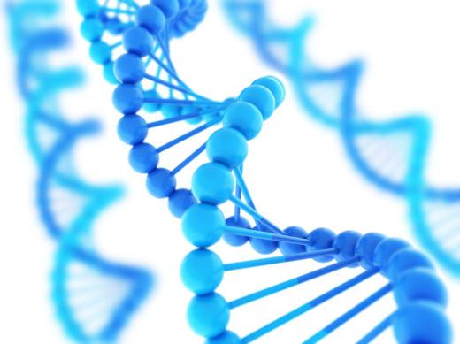 Молекула ДНК вируса