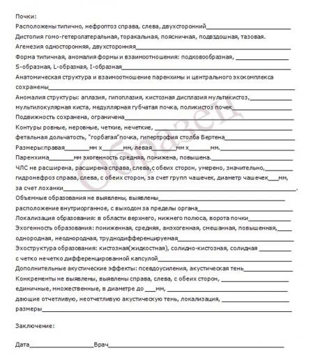 образец бланка УЗИ-обследования почек