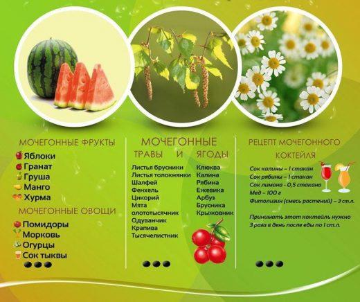 растения, обладающие мочегонными свойствами