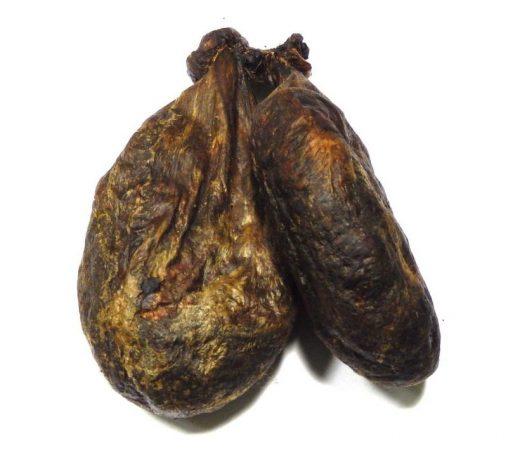 Железа внутренней секреции самца бобра