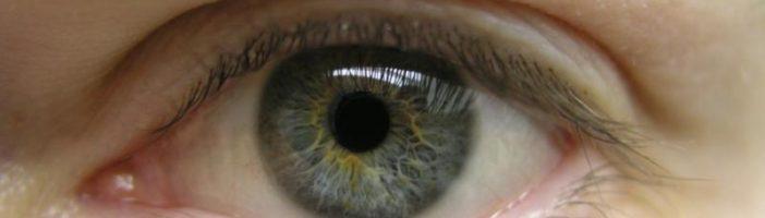 Продукты для улучшения зрения