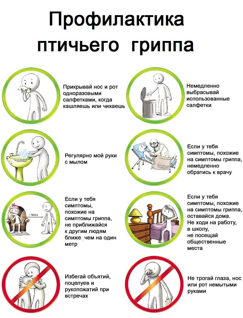 Профилактика гриппа в домашних условиях