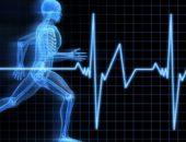 Пульс человека