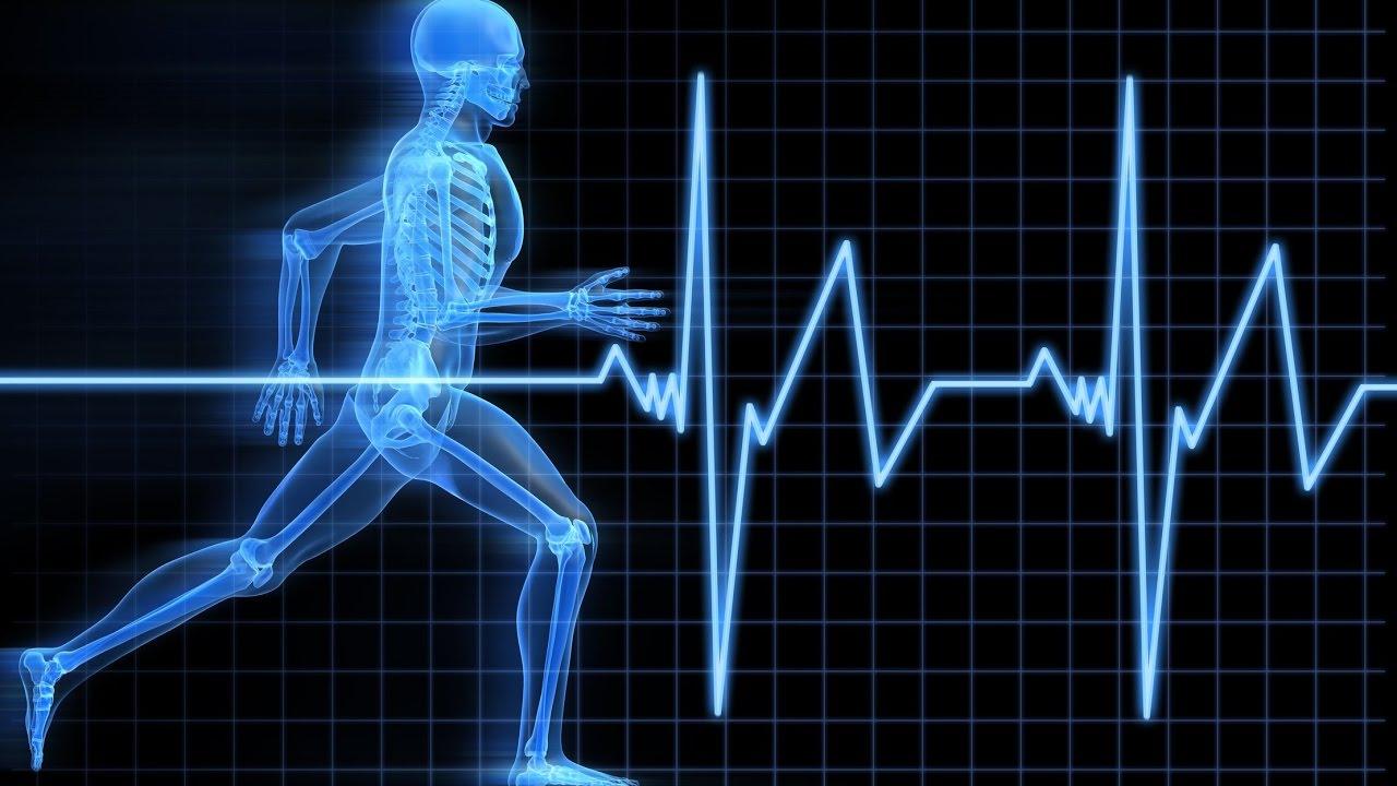 Пульс и здоровье человека: что считается нормой и как избежать проблем