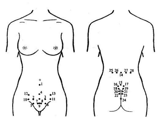 Рефлекторные точки на теле женщины