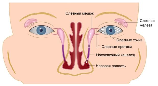 Схема глазного канала