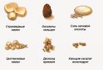 виды почечных камней