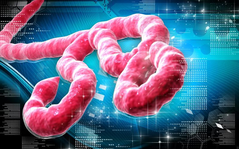 Смертельная инфекция: геморрагическая лихорадка Эбола