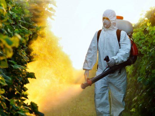 Мужчина распыляет химическое вещество