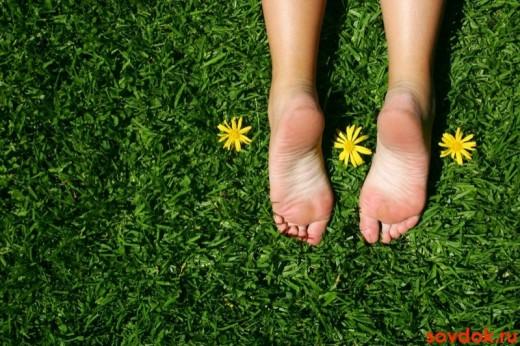 здоровые ноги на траве