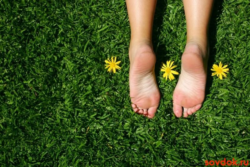 Лечение трофической язвы на ногах при варикозе и